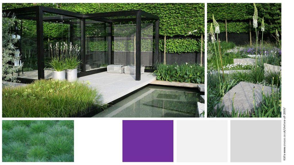 Stilrent. Minimalistiskt trädgård formklippt