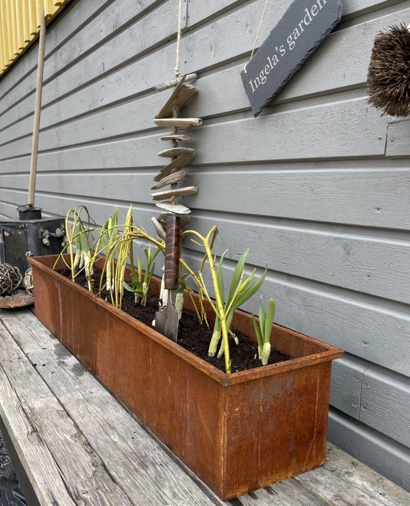 trädgård designer trädgårdsverktyg. vårbruk