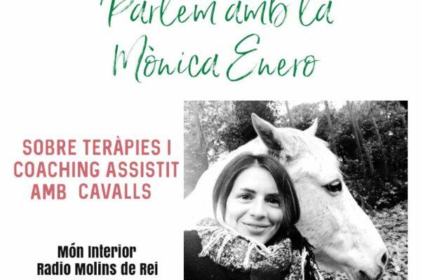 Coaching y terapia asistida con caballos con Mónica Enero – Món Interior