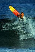 Longboard Action