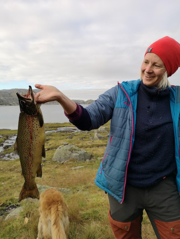 Snaut 2 kg kvalitetsfisk.