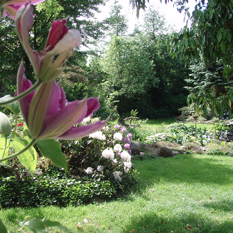 Gør din have sommerklar