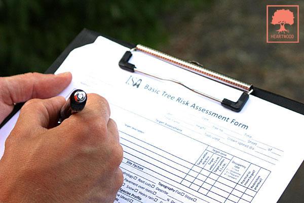 HEARTWOOD | ISA-certifierad arborist | TRAQ | Riskbedömning av träd