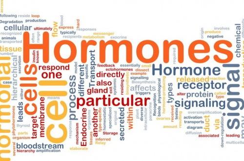 hormoner.jpg