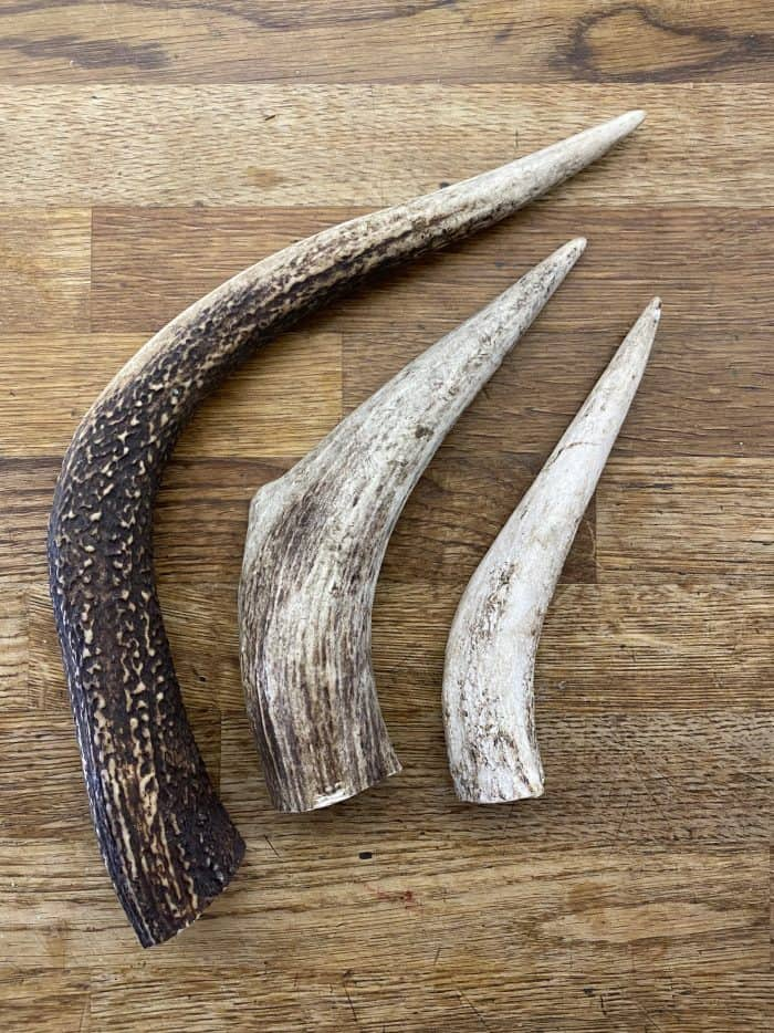 Natural Stags Antler Dog Chew