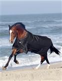 Rider by Horse Sport Regndækken