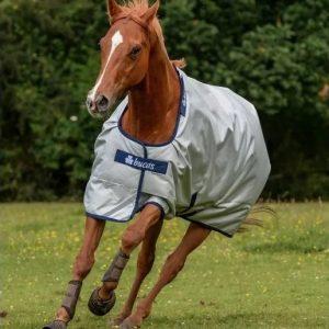 bucas-power-turnout-daekken-horsepartner