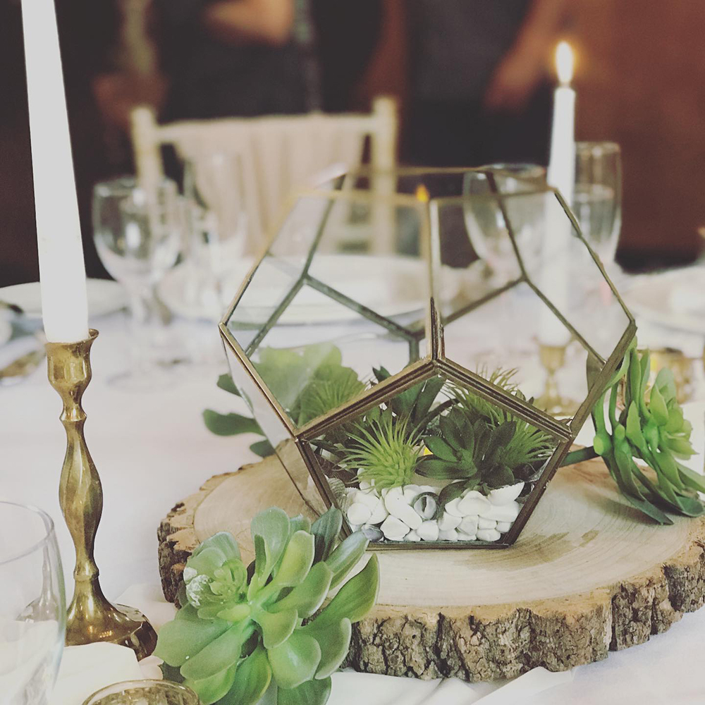 Hire Your Day - terrarium and succulent