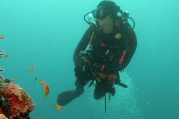 Rescue diver duiken en padi duikopleidingen ids dendermonde