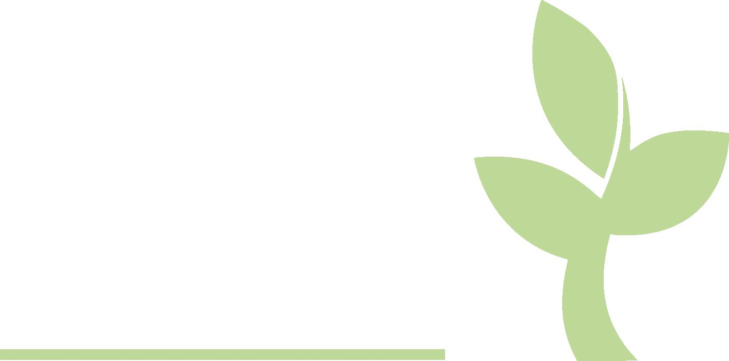 IEC2020 arkiv