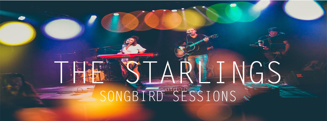 The Starlings-Songbird Sessions