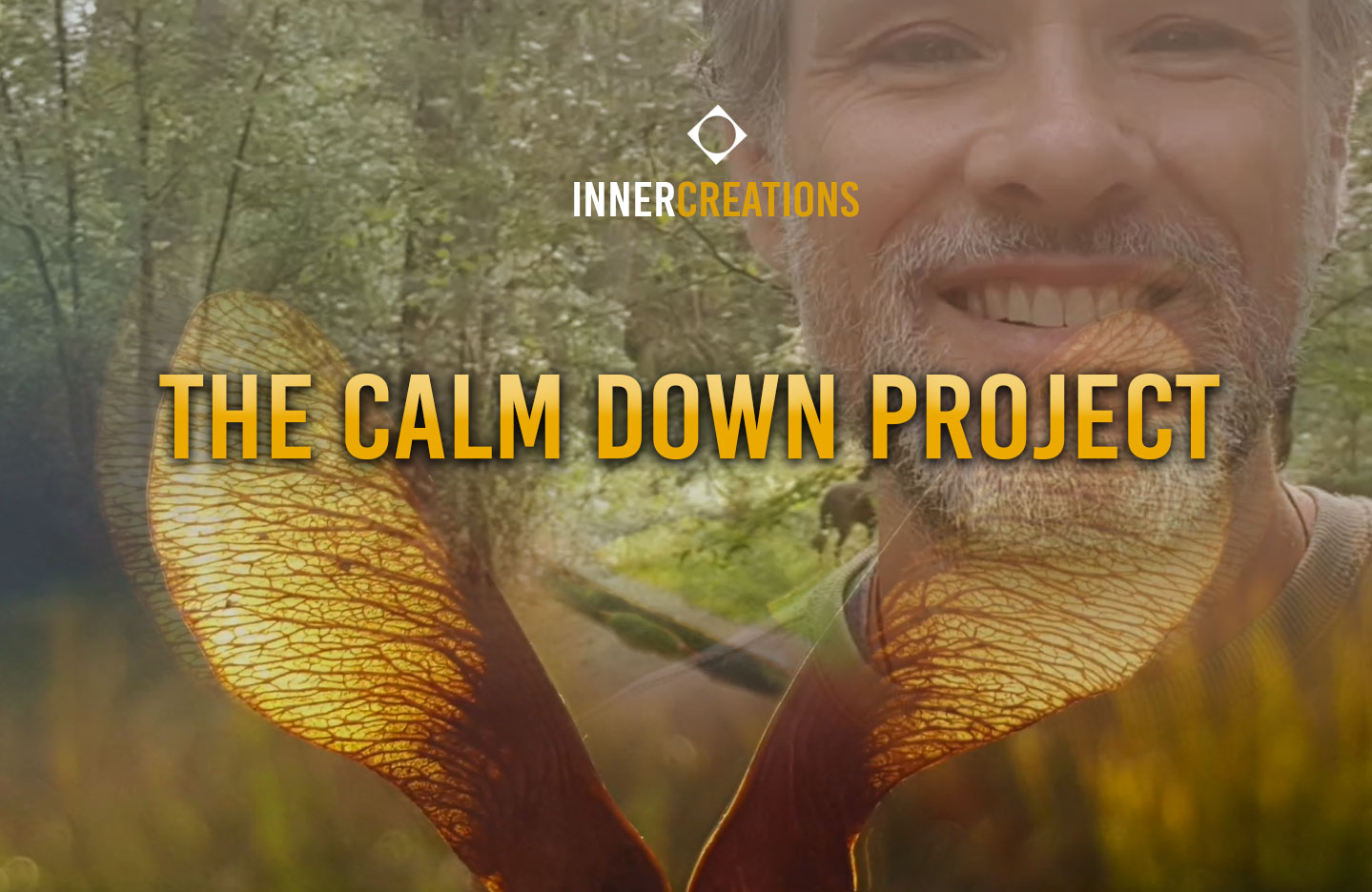 The Calm Down Project