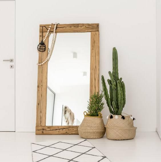 spegel med träram och två krukväxter