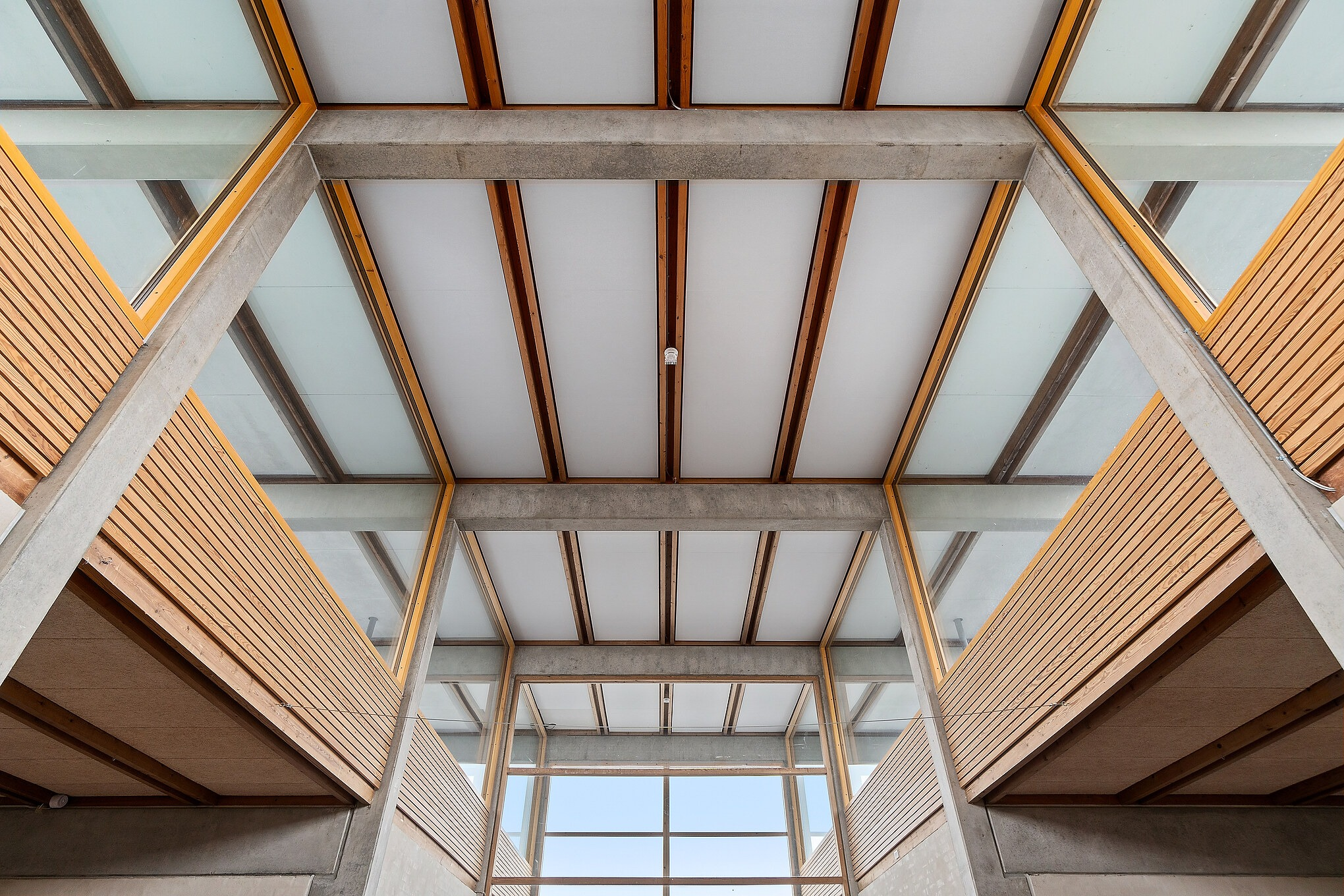 Architecturally pleasing picture of a ceiling made from wooden frames and acoustic PET panels. Det acoustic panels conceal asbestos slabs. All acoustic solutions made by Intelligent Space. Picture is taken on Skovlyskolen.