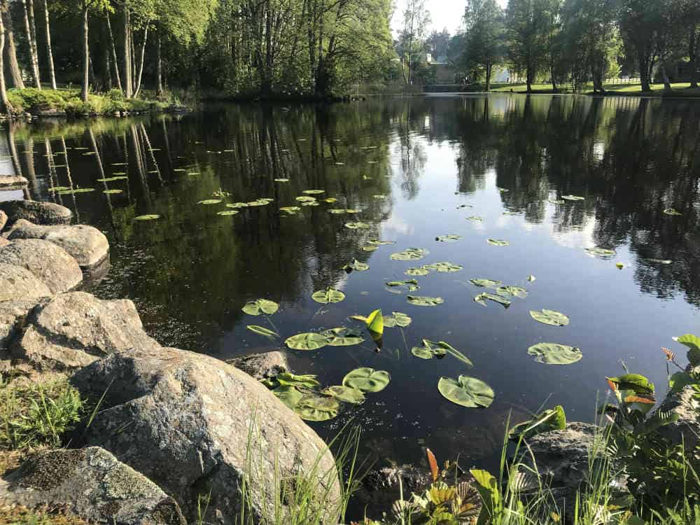 Status 2019 - første halvdel Ingelstad