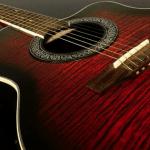 Gitarrvård
