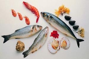 Hoofdgerechten Vis