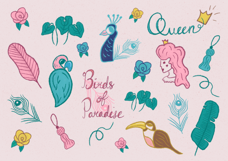 Jennis-Prints-Product-Design-Birds-of-Paradise-Illustrations