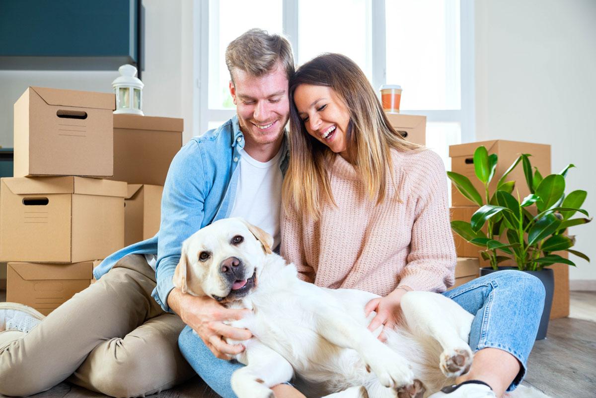 Hur du förbereder husdjur inför en långväga flytt