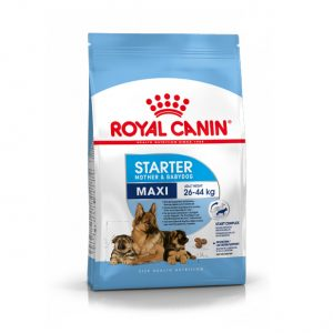 Royal Canin Maxi Starter Mother & Puppy