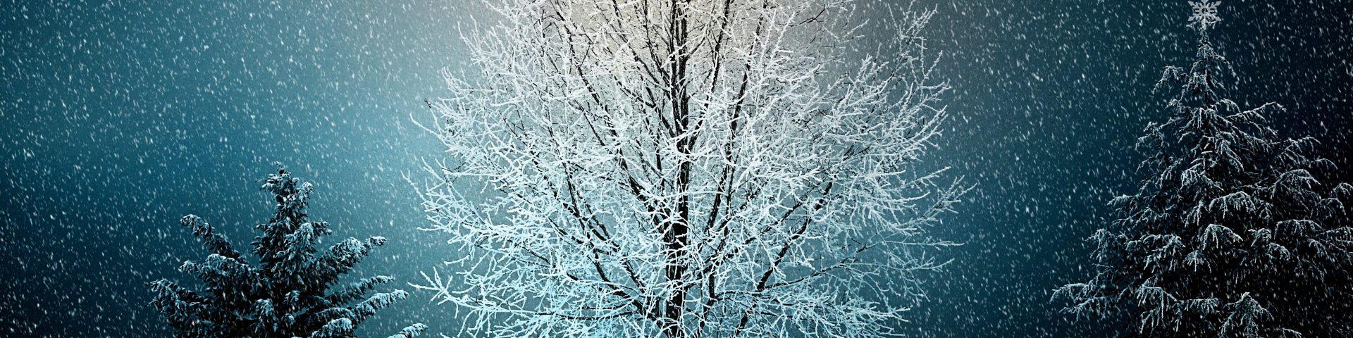winter 2896970 1920x480 - Boże Narodzenie - wierzenia i tradycje