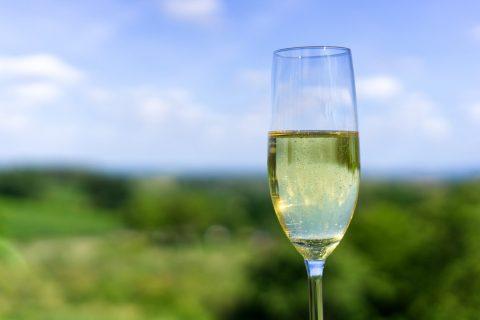 champagne 3599797 480x320 - Moje ulubione polskie wina musujące