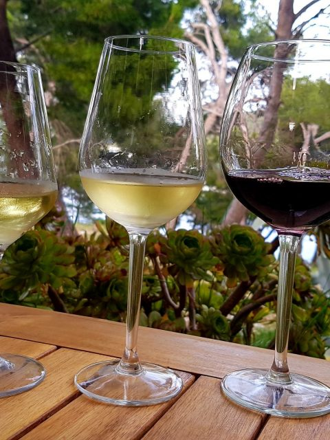 20190611 190537 1 480x640 - Wino pod żaglami - winnice Dalmacji