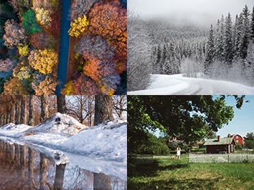 Korsord med temat årstider