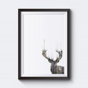Poster med rådjur