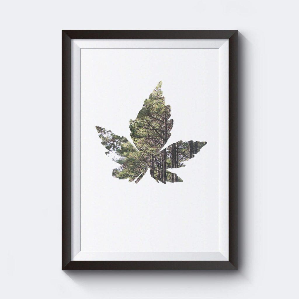 billig-poster-affisch-prints-motiv-lov-med-skog