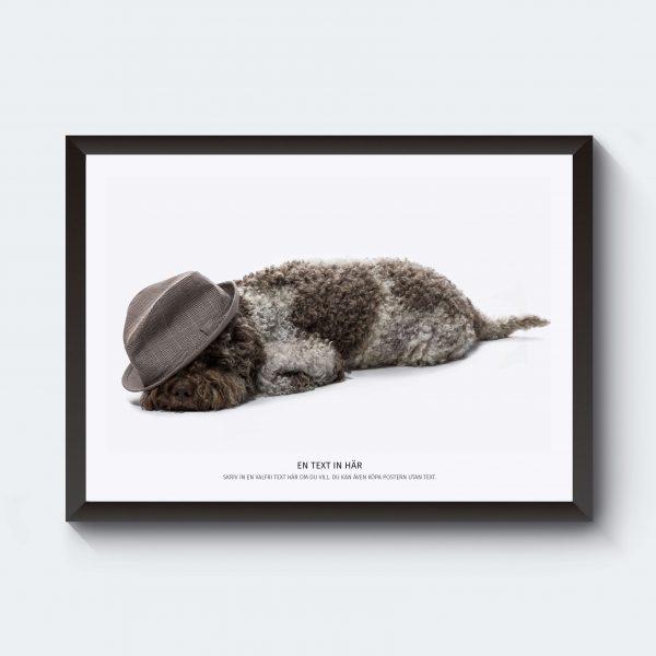 Personlig djurposter hund