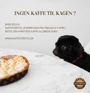 coffee-and-dog