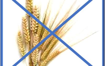 Studie om Celiaki, glutenintolerans