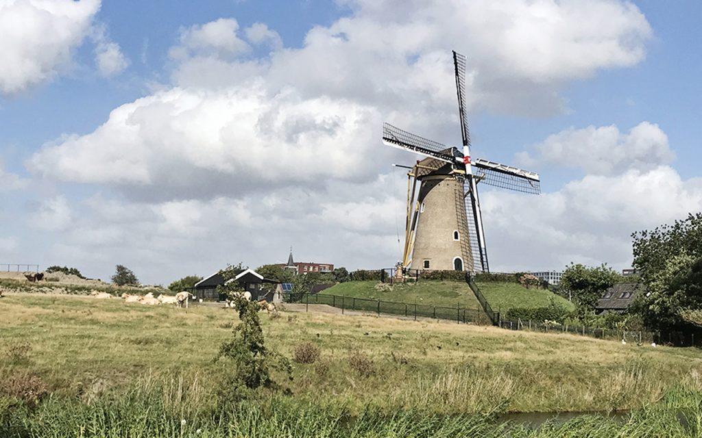 eersteling-molen-hoofddorp