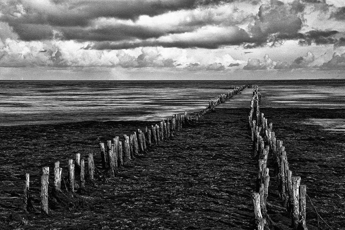 Træpæle strand går ud i havet