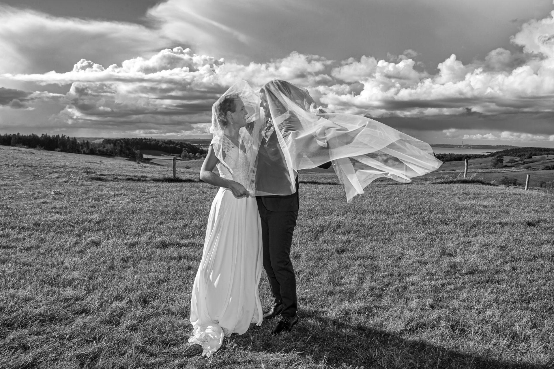 Brudepar i dansk marklandskab