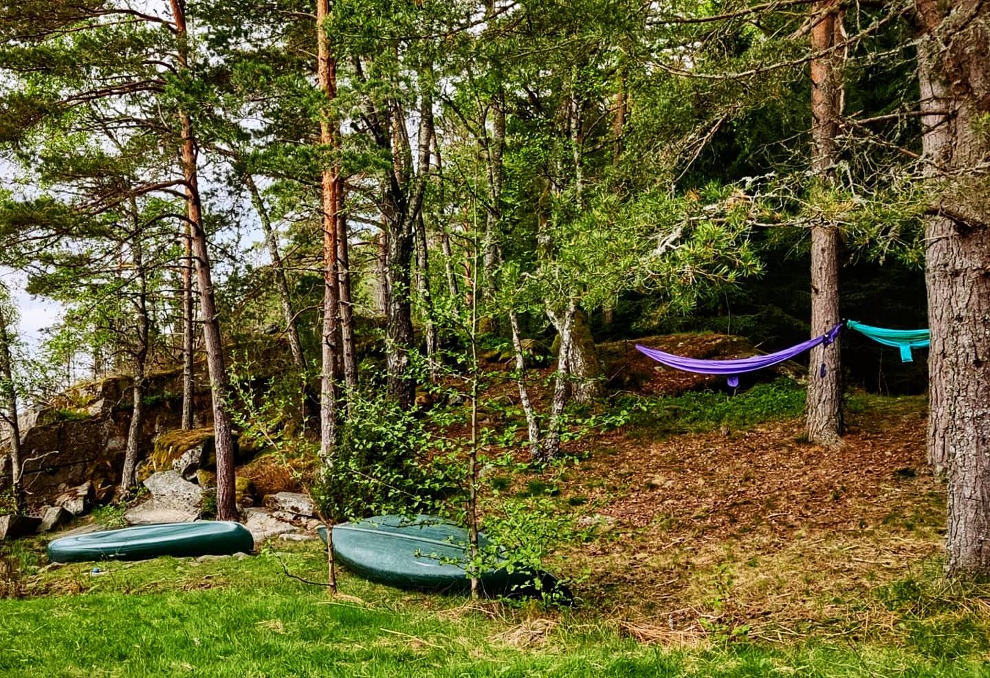Canoe and hammock