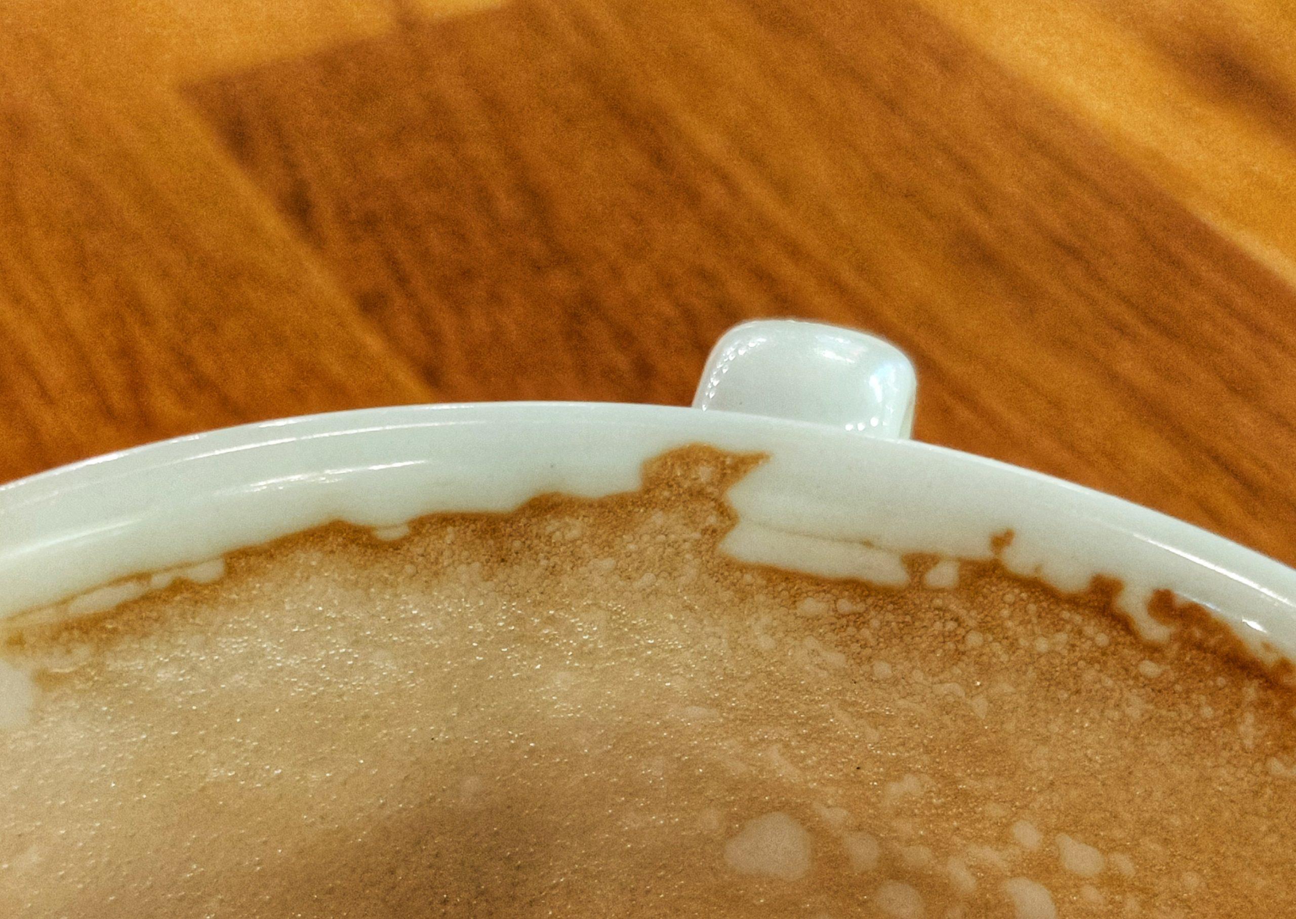 Bird in my coffee