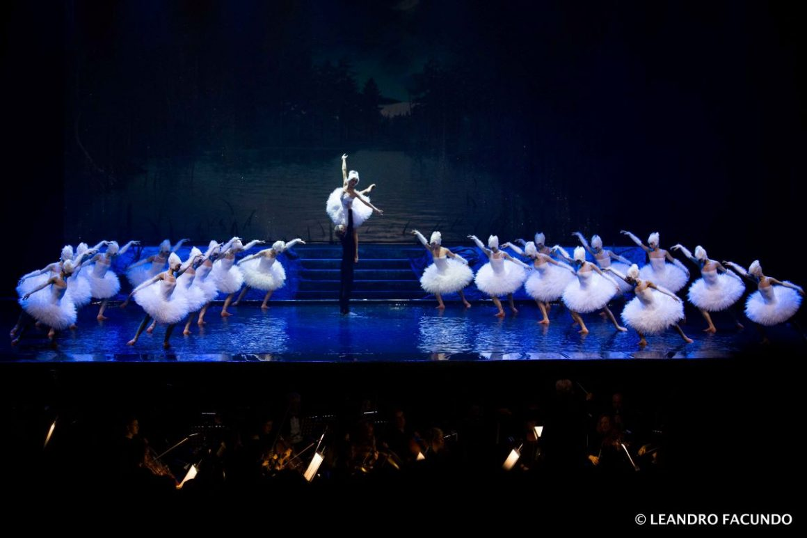Swan Lake On Water | Live People Agency