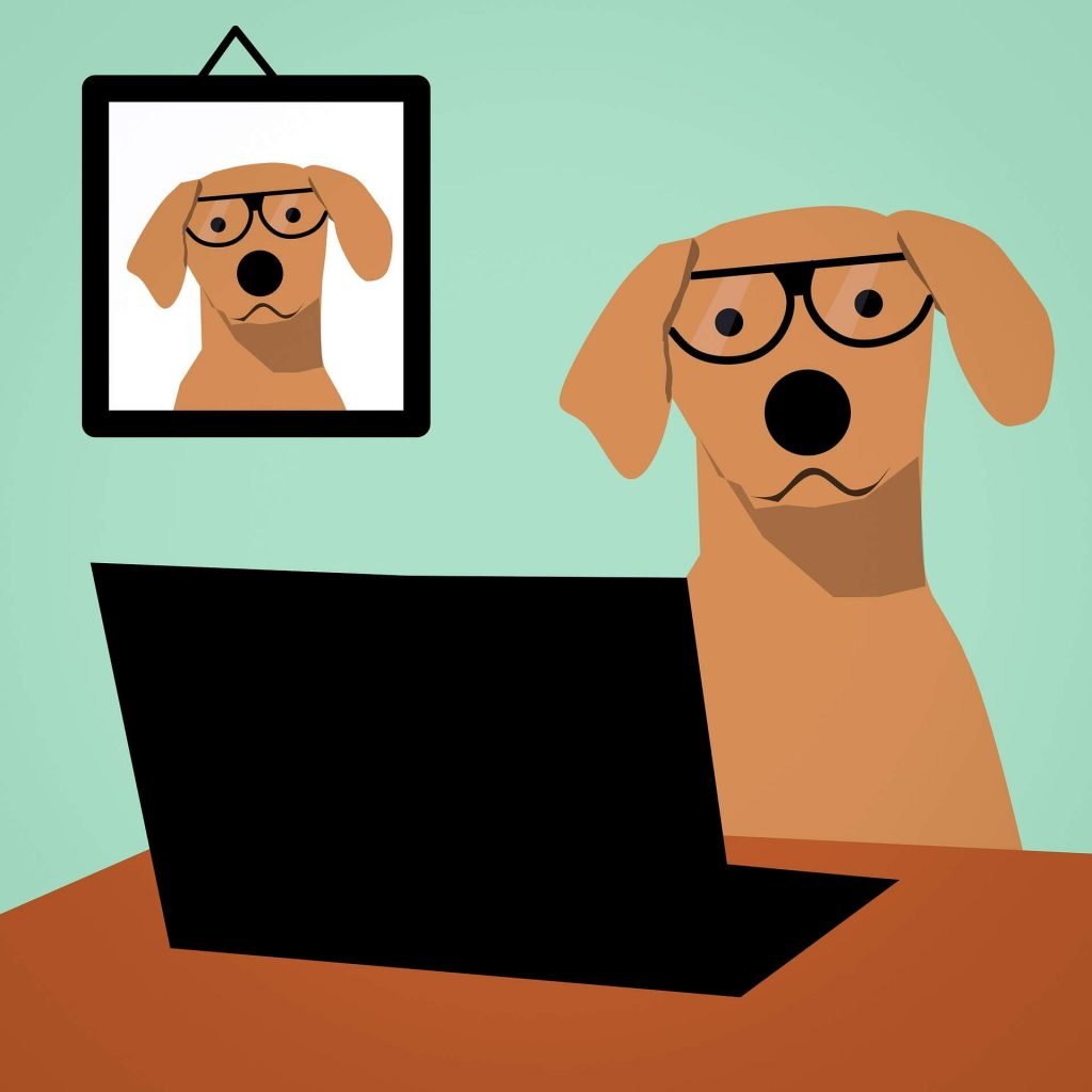online hundeskole hundetræning