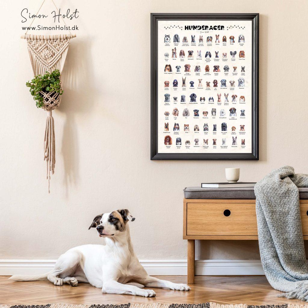 hundeplakat med mange racer