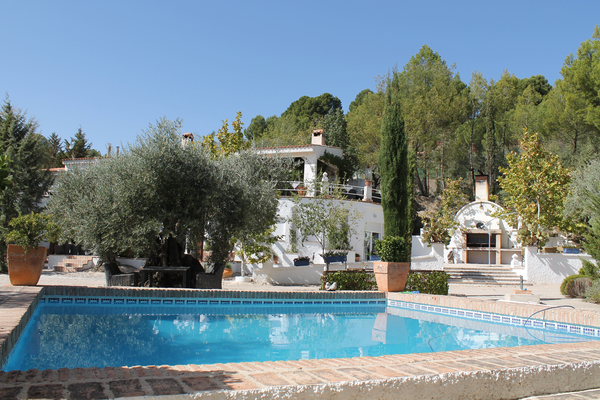 Los Mofletes is located in an ancient olive yard, where you can relax, cool down in the pool or just enjoy the beautiful garden and its tranquility.
