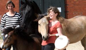 Meditatieve drum bij de paarden