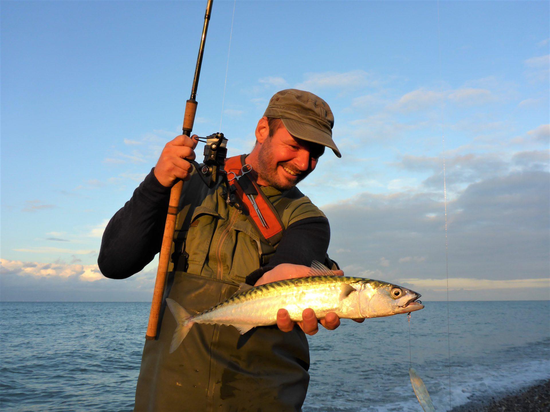 Lystfiskeri efter makrel i Limfjorden kan gøres om sommeren.