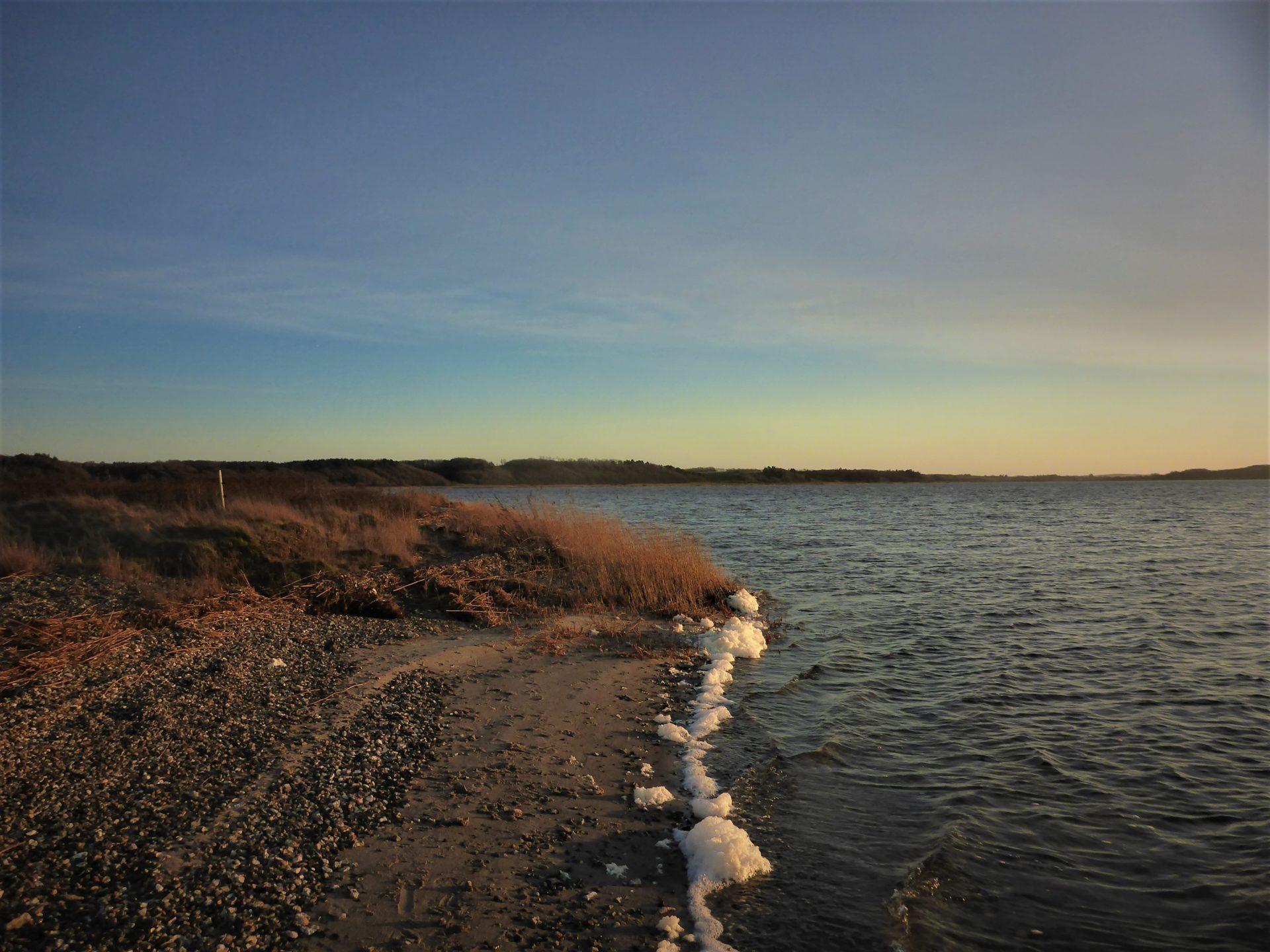 Navet er en god fiskeplads i Limfjorden til fangst af havørreder.