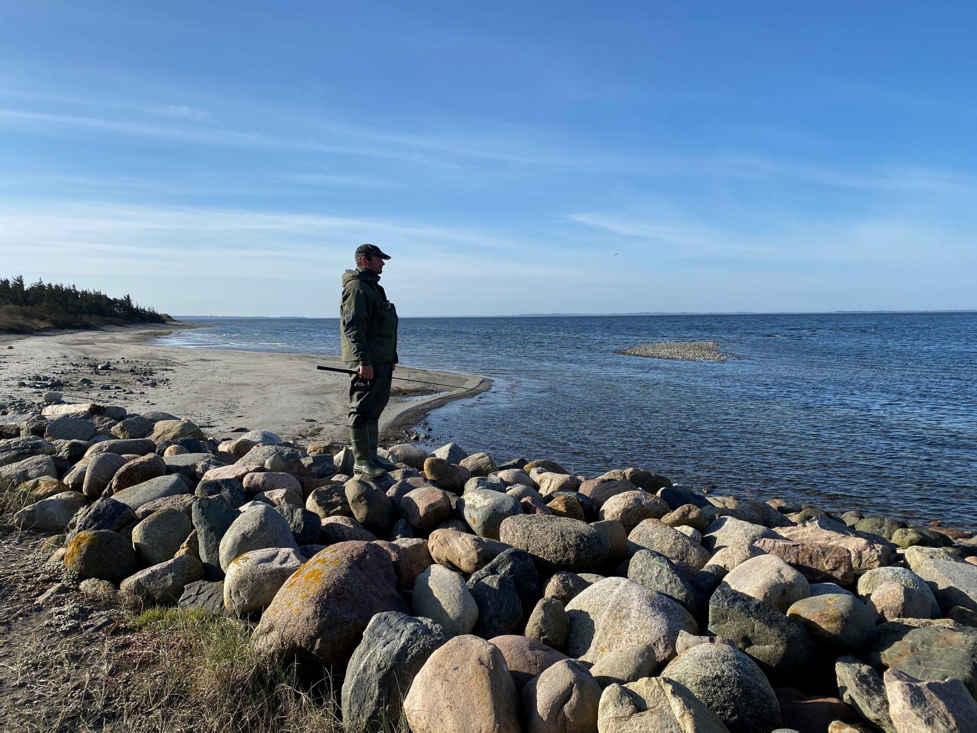 Rønbjerg er en af de helt gode pladser til lystfiskeri efter havørred i Limfjorden.