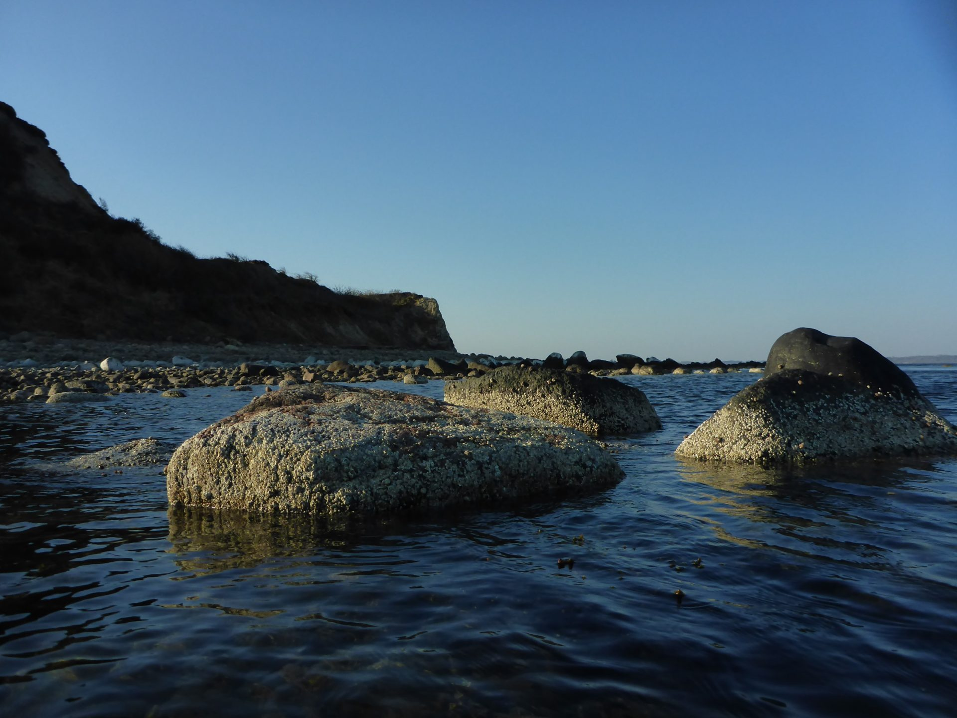 Ertebølle Hoved er en sublim fiskeplads i sommerhalvåret.