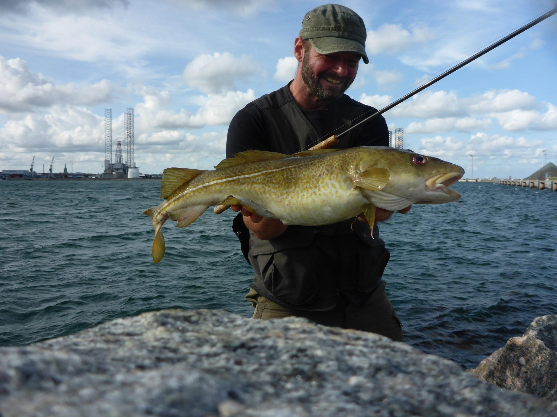 Frederikshavn - Sæby og omegn, byder på lystfiskeri efter et væld af spændende fiskearter