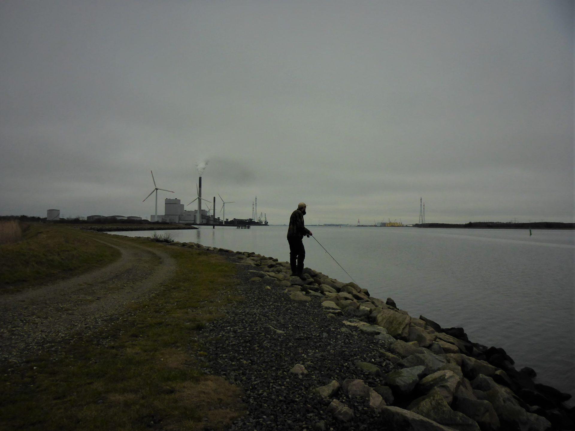 Rærup ved Limfjorden er en god helårsplads til fangst af havørred.