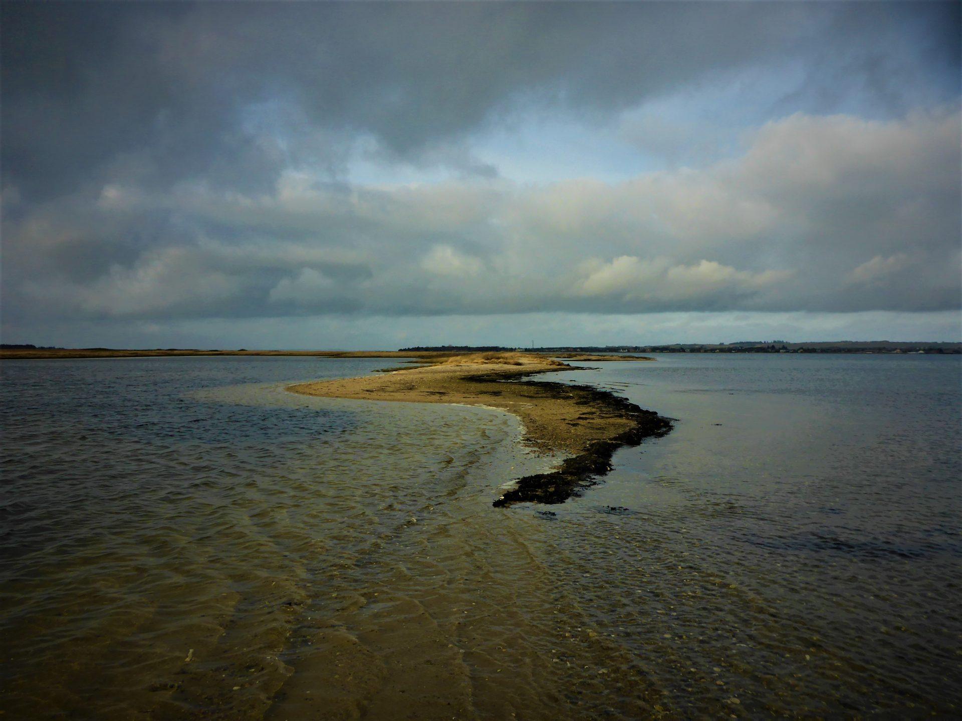 Selde Vig i Limfjorden er ne god fiskeplads til fangst af havørred.